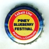 ca-04030 - Piney Blueberry Festival